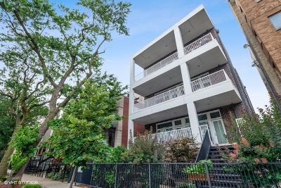 Chicago Condo/Townhouse New: 1832 West Rice Street #1N