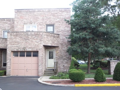 Elmhurst Condo/Townhouse New: 479 North Addison Avenue #D