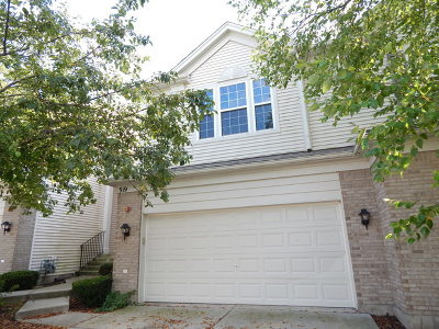 Streamwood Condo/Townhouse New: 919 Elizabeth Drive