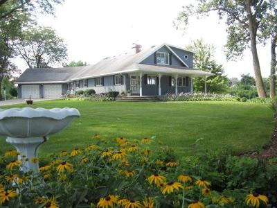 Plainfield Single Family Home For Sale: 22611 West Renwick Road