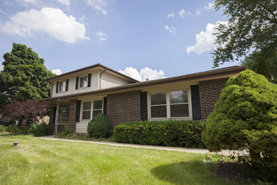 Schaumburg Single Family Home For Sale: 743 Crest Avenue