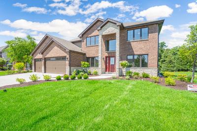 Mokena Single Family Home For Sale: 19940 Berkshire Drive