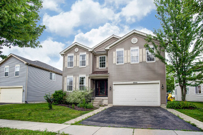 Kane County Single Family Home New: 6542 Pine Hollow Road