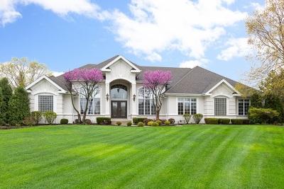 Homer Glen Single Family Home New: 17040 Burr Oak Drive