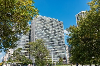 Chicago Condo/Townhouse New: 330 West Diversey Parkway #1402