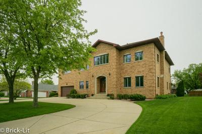 Palos Heights Single Family Home New: 6527 Deer Lane