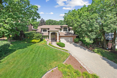 Orland Park IL Single Family Home New: $464,900