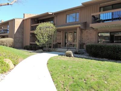 Burr Ridge Condo/Townhouse For Sale: 8098 Garfield Avenue #5-2