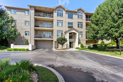 Tinley Park Condo/Townhouse New: 18650 Pine Lake Drive #1C