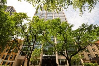 Chicago Condo/Townhouse New: 2728 North Hampden Court #1101