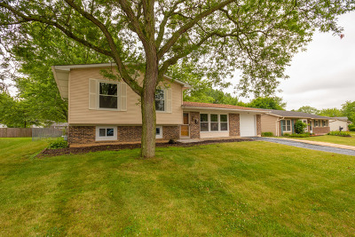 Hanover Park Single Family Home For Sale: 842 Yorkshire Drive