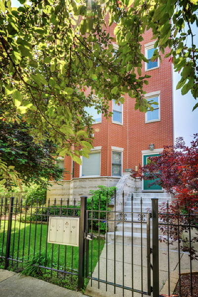 Chicago Condo/Townhouse New: 1102 North Wood Street #1