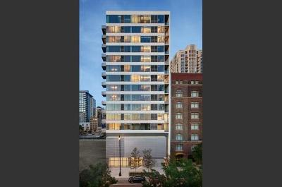 Chicago Condo/Townhouse New: 1345 South Wabash Avenue #410