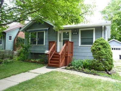 Geneva Single Family Home New: 101 Logan Avenue