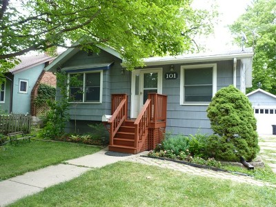 Kane County Single Family Home New: 101 Logan Avenue