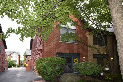 Chicago Condo/Townhouse New: 1801 West Diversey Parkway #32