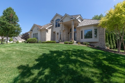 Libertyville Single Family Home For Sale: 1204 Loyola Drive