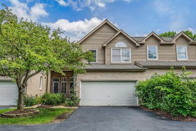Clarendon Hills Condo/Townhouse For Sale: 305 Alabama Avenue