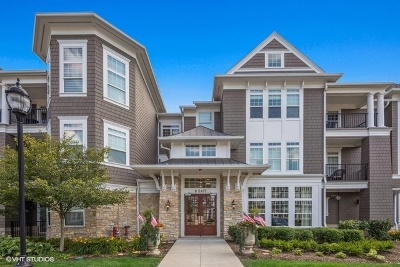 Hinsdale Condo/Townhouse New: 8 East Kennedy Lane #206