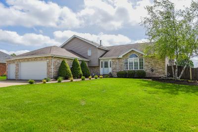 New Lenox Single Family Home New: 2598 Cattleman Drive