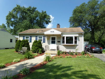 Joliet Single Family Home New: 905 North Barthelme Avenue