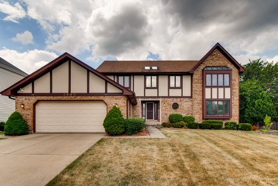 Hoffman Estates Single Family Home For Sale: 3880 Bernay Lane