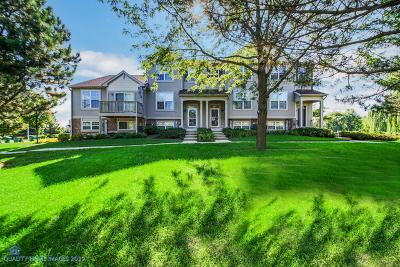 Grayslake Condo/Townhouse New: 855 Cherry Creek Drive