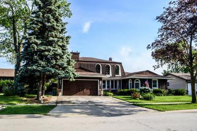 Elk Grove Village Single Family Home For Sale: 451 Walnut Lane