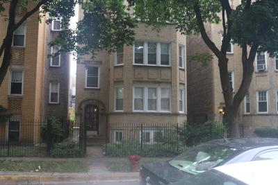 Chicago Condo/Townhouse New: 6230 North Francisco Avenue #1