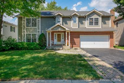 Naperville Single Family Home New: 115 Newgate Avenue