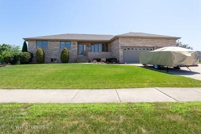 Mokena Single Family Home New: 10537 Williams Way