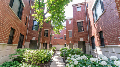 Chicago Condo/Townhouse New: 4046 North Clark Street #J