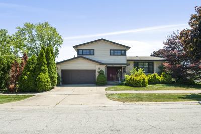 Morton Grove Single Family Home For Sale: 9217 Merrill Avenue