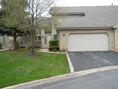 Palos Heights Condo/Townhouse New: 17 West Bay Road