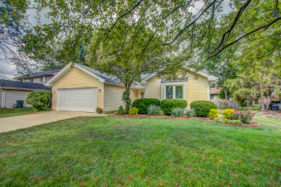 Old Farm Single Family Home For Sale: 2299 Woodview Lane