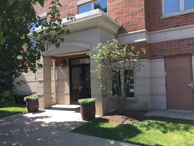 Chicago Condo/Townhouse New: 5924 North Lincoln Avenue #508