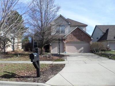 Vernon Hills Single Family Home Auction: 44 East Warson Court