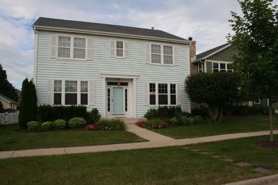 Vernon Hills Single Family Home For Sale: 284 Lasalle Street