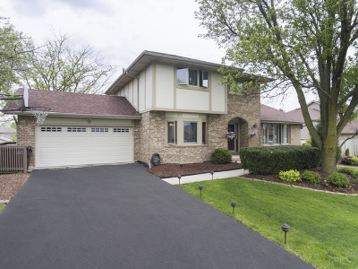 Tinley Park IL Single Family Home New: $359,900