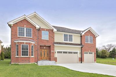 Vernon Hills Single Family Home For Sale: 881 East Writer Court