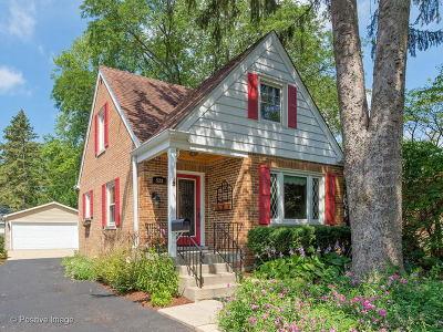 Glen Ellyn Single Family Home For Sale: 528 Kenilworth Avenue