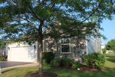 Shorewood Single Family Home For Sale: 117 National Court