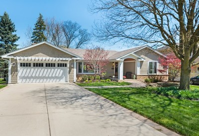 Glen Ellyn Single Family Home Contingent: 289 Abbotsford Court