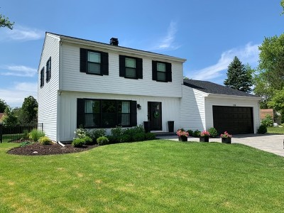 Vernon Hills Single Family Home For Sale: 308 Spring Lane