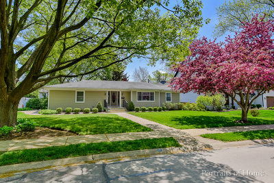 Naperville Single Family Home For Sale: 810 Douglas Avenue