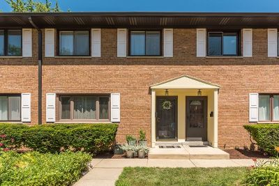 Glen Ellyn Condo/Townhouse For Sale: 300 Duane Street #3
