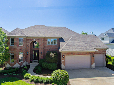 Naperville Single Family Home For Sale: 4040 Teak Circle