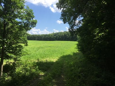 Morris Residential Lots & Land Contingent: 2335 West Southmor Road