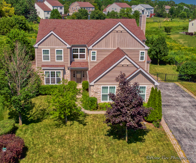 Aurora Single Family Home For Sale: 3243 Homestead Avenue