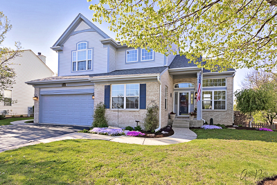 Lake Villa Single Family Home For Sale: 810 Park Avenue